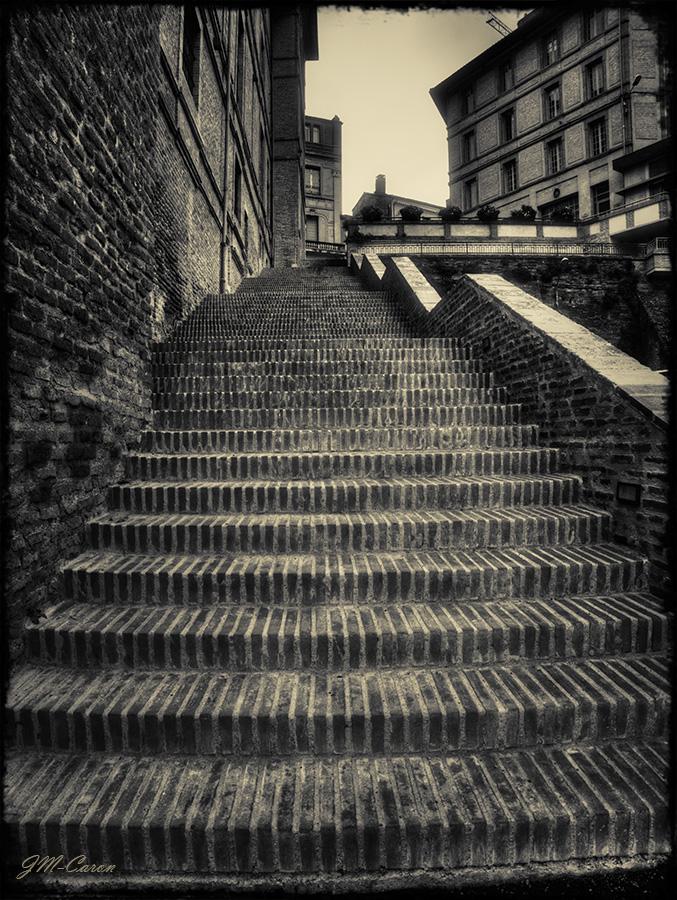 Montauban (27)