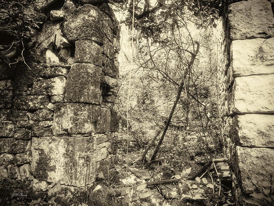 Ruines de La Garrigue (3)
