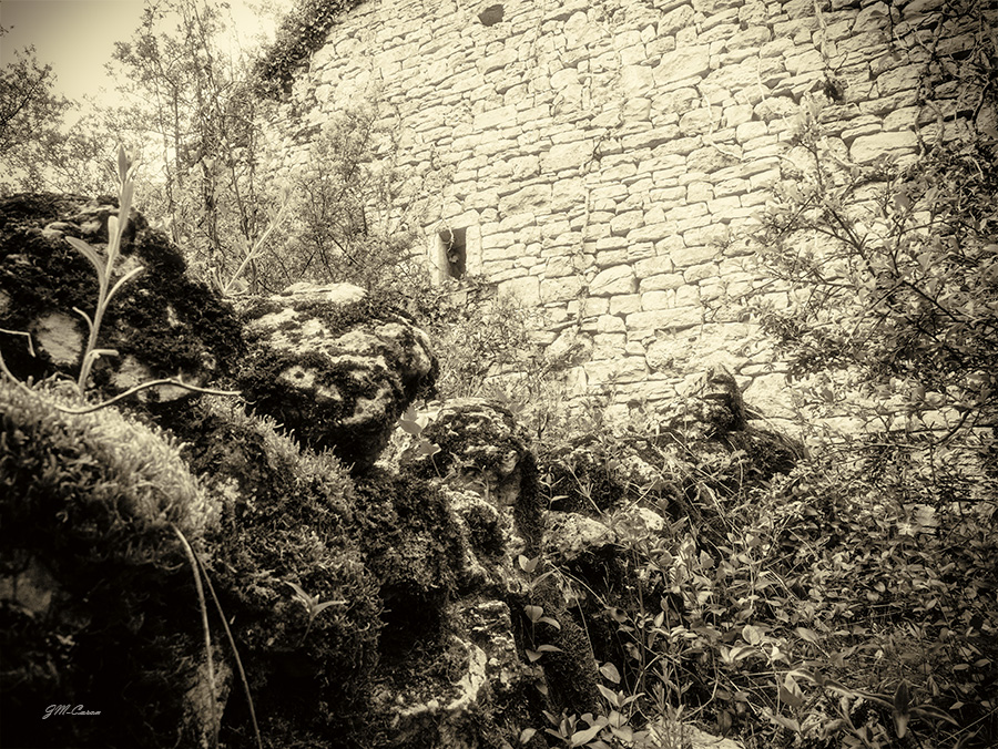 Ruines de La Garrigue (5)