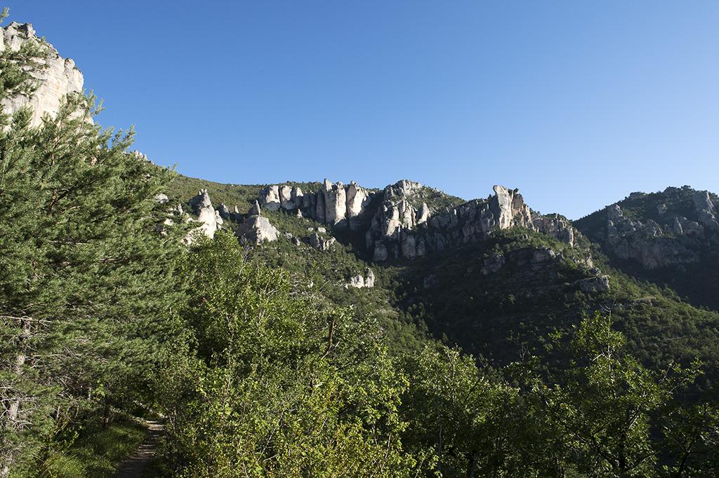 Saint-Marcelin-Gorges-du-Tarn-1