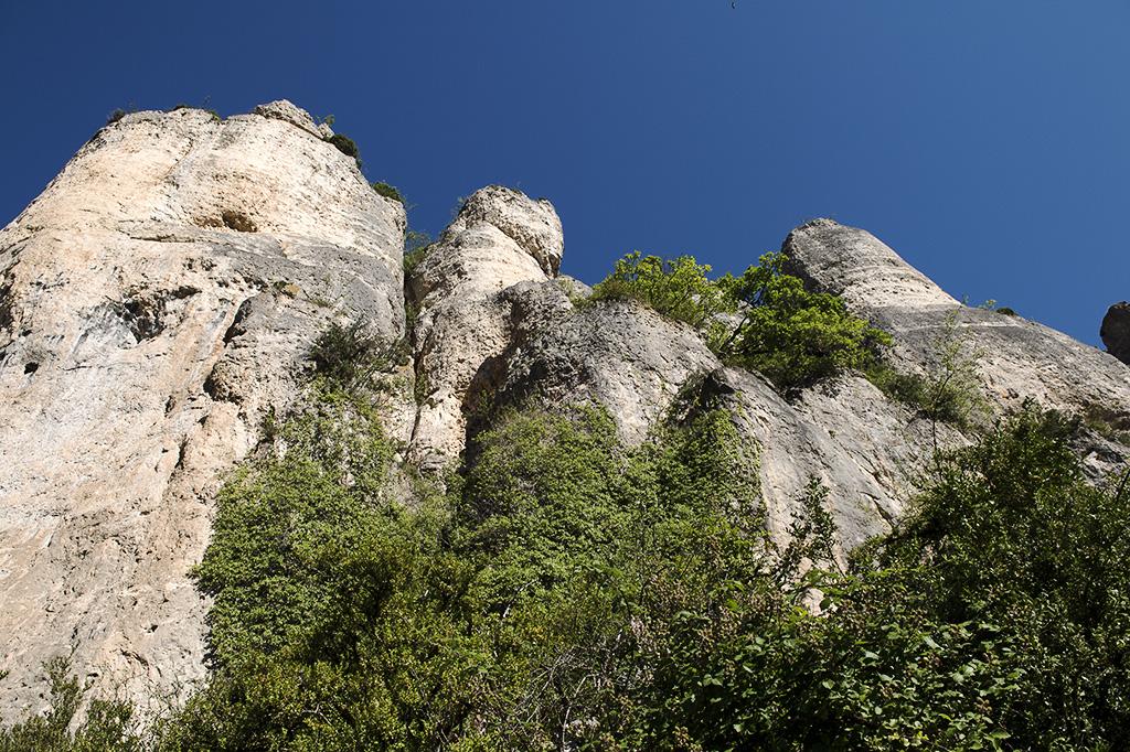 Saint-Marcelin-Gorges-du-Tarn-19
