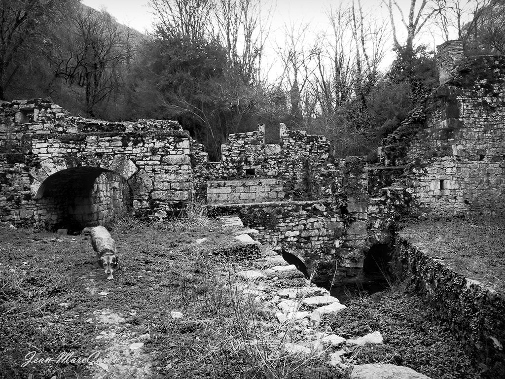 Gorges de l'Alzou - Moulin du Saut (17)